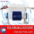 Air cooling ozone generation tube,2g 3g 5g 6g ceramic ozone cells