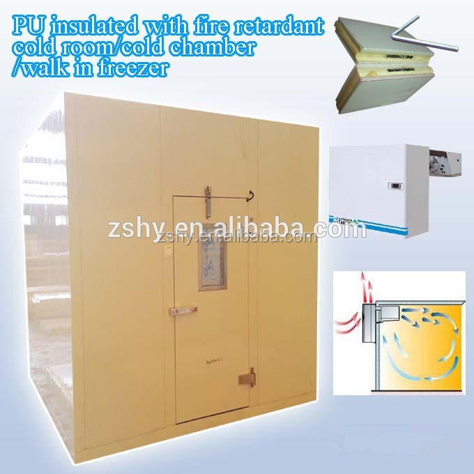 PU insulated with fire retardant cold room/cold chamber/walk in freezer