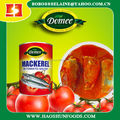 Cheap canned Mackerel fish in tomato sauce