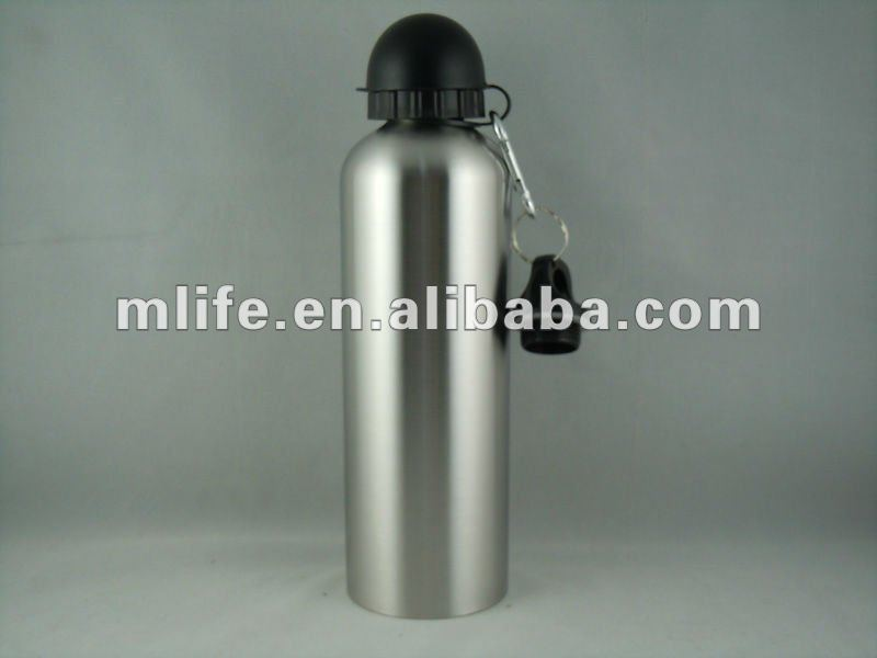 water bottle stainless steel with carabiner and dust proof cap
