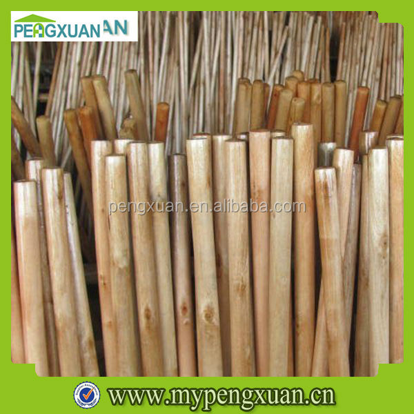 Smooth Varnished Eucalyptus Wood Logs