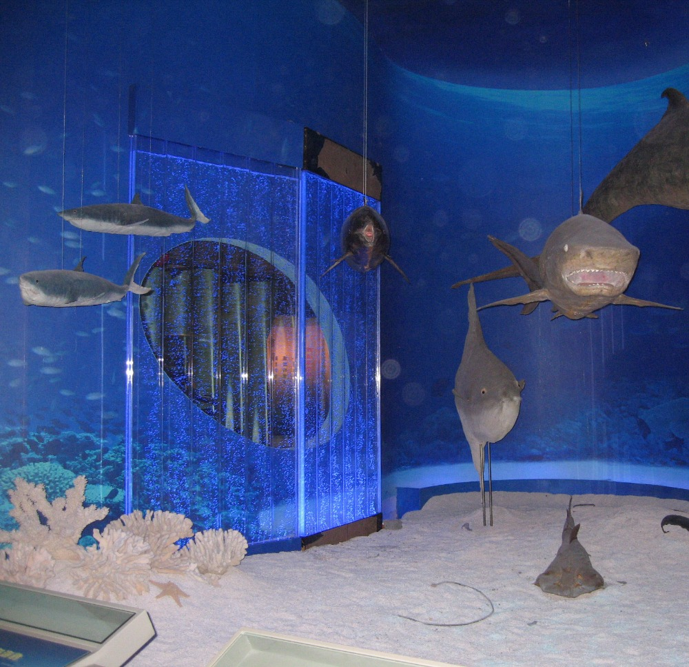 Museum custom partition screens acrylic water bubble wall