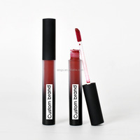 Hot Selling Makeup Waterproof Lip Gloss