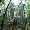 Sports Amp Entertainment Jurassic Brachiosaurus Dinosaurs