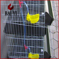 Factory Wholesale Quail Animal Layer Cages and Poultry Quail Battery Cage