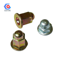 hexagon cap nut din917 cap nut