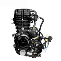 Water-Cooled Cold Style 4 Stroke 300cc Motorcycle Engine for Tricycle