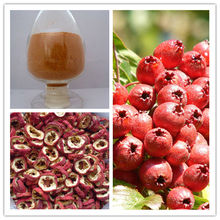 100% Food Grade Organic Hawthorn Fruit Powder