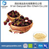 Natural Mangosteen Fruit Extract/ Fresh Mangosteen Fruit for Sale/ Mangosteen Fruit Extract
