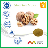 High Quality c-GMP manufactorier's Walnut Meat Extract