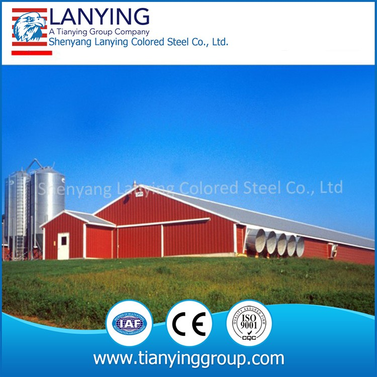 chicken farm steel structure , chicken farm building , steel structure