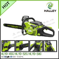 Professional Garden Tools echo chainsaws