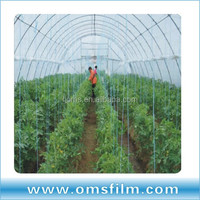 Agricultural Green House Covering Film
