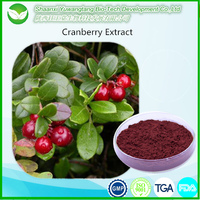 Best price cranberry extract powder 25% Anthocyanidins
