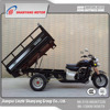 China WUXI Motor Power Heavy Loading Adult Tri Cycle