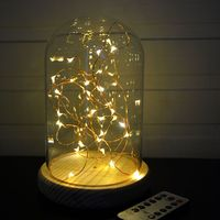 Glass Dome With LED Lights And