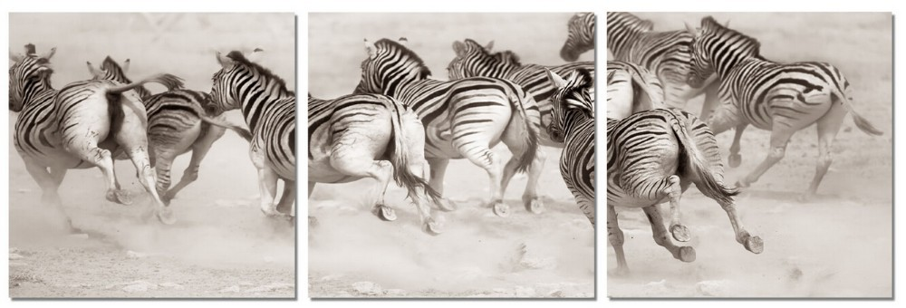 Runing Zebra Home Black and White Modern Wall Painting