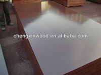 fpercy plywood/film faced plywood/plywood producter
