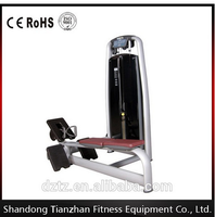 Tianzhan /Commercial gym equipment /fitness equipment Back Extension Lat Pulldown/ Sport Equipment Low Row TZ-6021