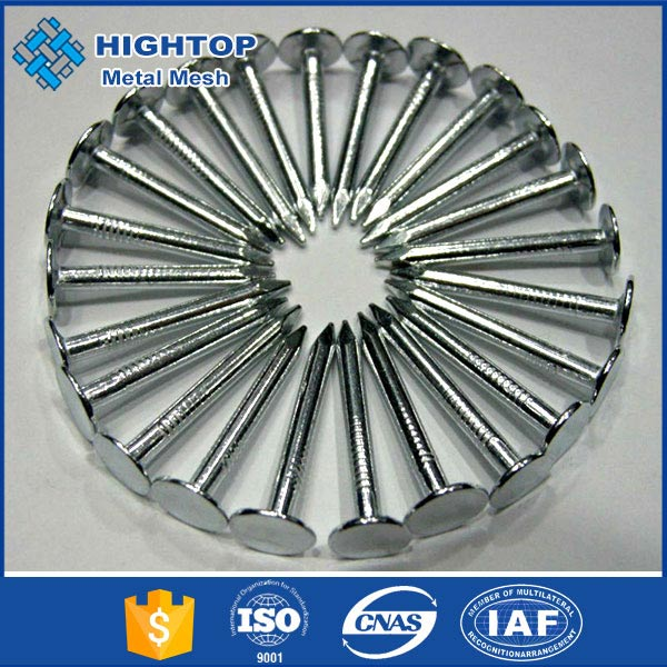 electro galvanized 2.5 inch screw shank twisted roofing nail
