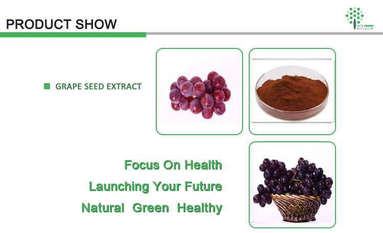 Antioxidants Grape seed powder extract OPC 95% ORAC>16000 oligomere proanthocyanidine