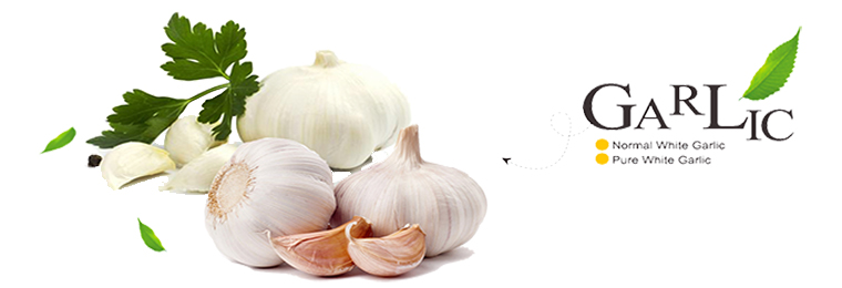 China Natural Fresh Red Garlic 5.0cm 3p
