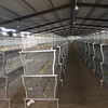 Poultry cage wholesale galvanized layer chicken brooder for sale