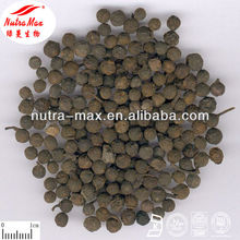 Hight quality Cubeb Berry Extract