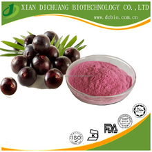 natural spray dried Acai Berry fruit Extract powder for beverage addictive