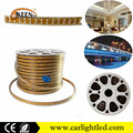 Newest 220V Double Lines Waterproof Flexible 3528 LED Strip Lights With CE Certificate