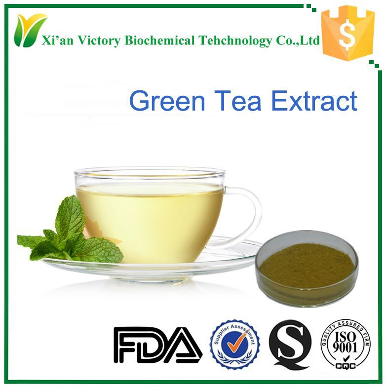 100% polyphenol green tea extract gmp certified companies