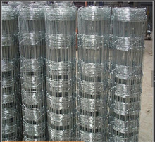 Hot Sale Galvanized Sheep Square Wire Mesh Fence