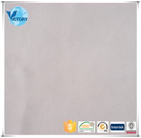 2016 China Hot Sale High Quality 100% Polyester Plain Nude Mesh Fabric