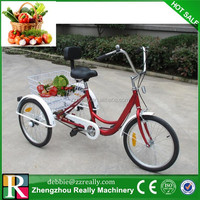 Factory supply 12 inch kids 3 wheel bicycle with rear basket