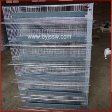 Metal Automatic Quail Cages With Quail Feeder For Kenya