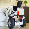 Wind Rover 2 Wheel Self Balancing