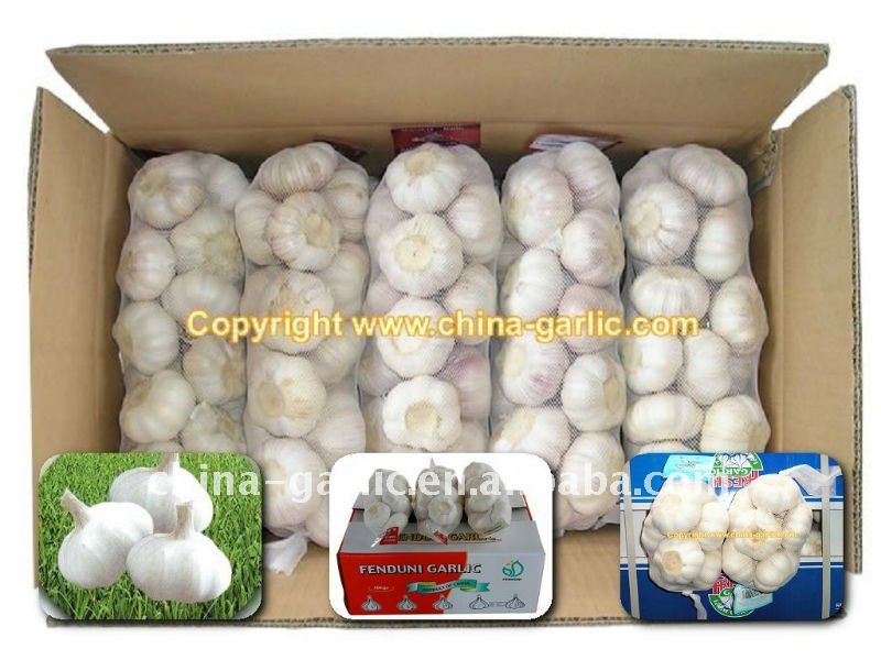 Good Seed Garlic--High Quality & Low Price