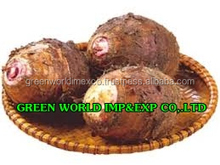 HOT NEWS: THE MOST COMPETITIVE PRICE OF TARO FROM VIETNAM