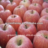 Chinese New Season Fresh Red Fuji Apple
