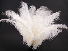 wholesale fashion beautiful cheap ostrich feather with factory Supply