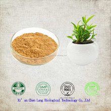 Hot Sale Free Samples Pure Nature Plant Extract Dendrobium