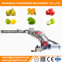 Automatic fruit washing waxing grading machine fruits sorting drying line good price for sale