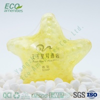 Hot Sale Hotel Transparent Crystal Bath Soap is soap