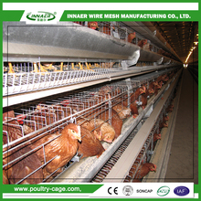 Poultry Farm Equipment Multi-tier Layer Chicken Cage for Kenya