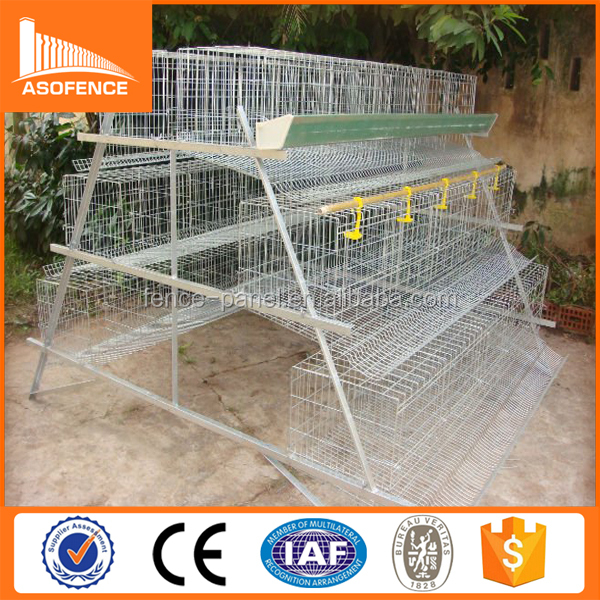 Kenya chicken cage / High quality Chicken laying cage types of poultry house