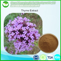 Natural chinese herbal medicine Thyme Extract
