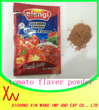 10g Tomato Seasoning Powder Barbecue Seasoning