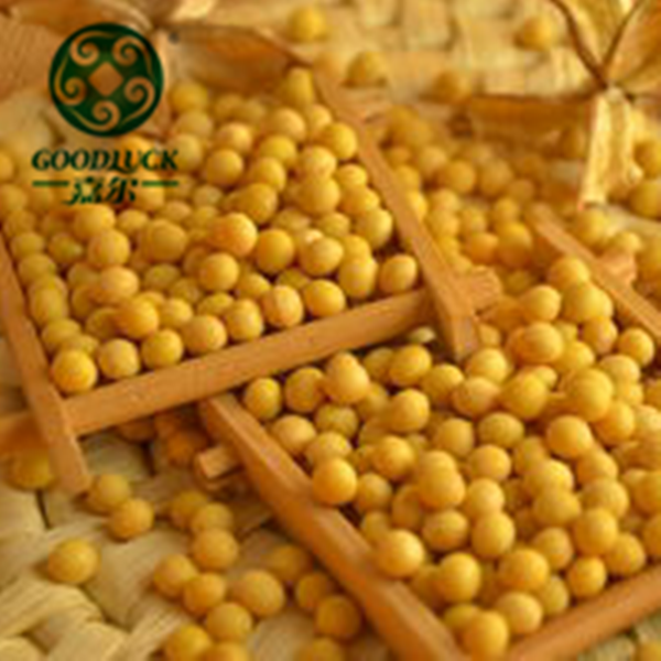 Wholesale Chinese Dried GMO/non-GMO Soybeans a Leading Supplier