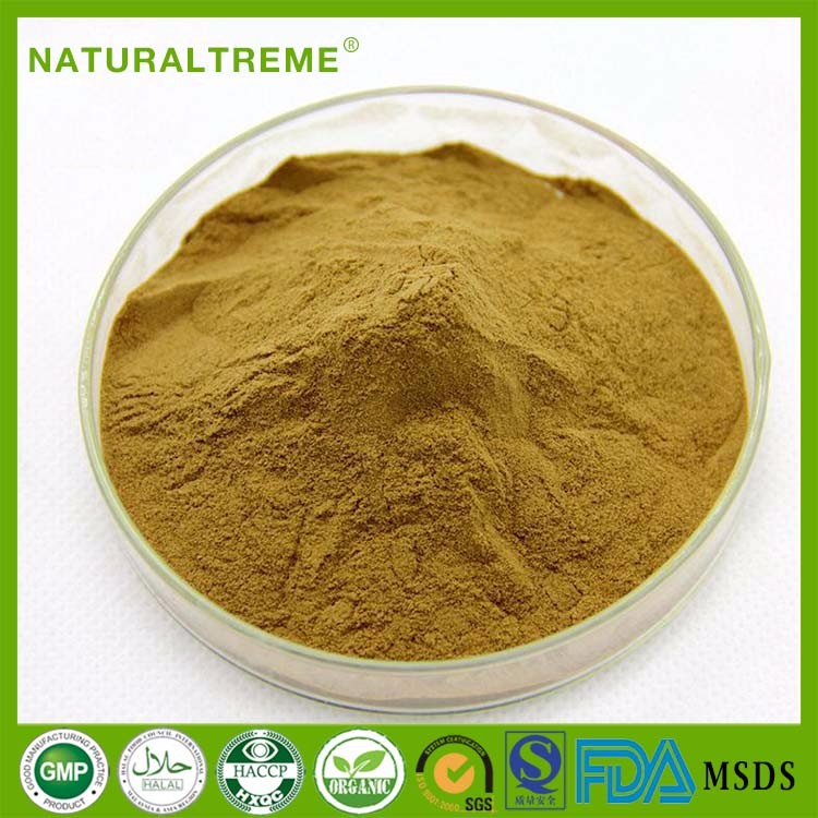 High Quality Natural Rice Bran Extract Ceramide Powder 10:1 GMP Manufacturer free sample