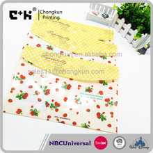 A4 Customised Printing Plastic Clear Transparent Envelope File Folder